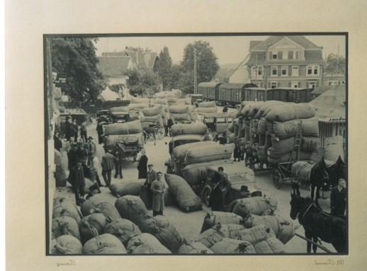 Hopfenverladen am Bahnhof in Tettnang in den 60er Jahren